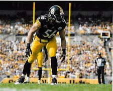 ANTHONY CHIICKILLO PITTSBURGH STEELERS COLOR ACTION VS VIKINGS 8X10