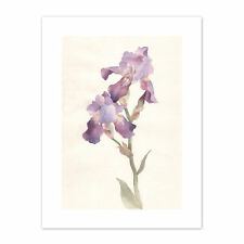 Flower Violet Iris Watercolour  Print Canvas Premium Wall Decor Poster
