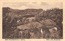 Bad Charlottenbrunn Schlesien Blick vom Blockberg Postkarte