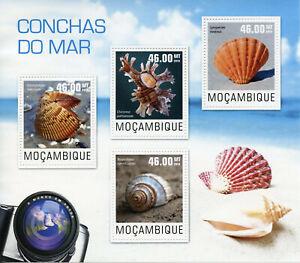 Mozambique Seashells Stamps 2014 MNH Sea Shells Lyropecten Marine 4v M/S