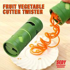 Fruit Vegetable Processor Veggie Twister Cutter Container Slicer Kitchen Tool AU