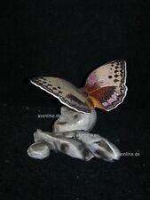 +# A002794_15 Goebel Archiv Prototyp Schmetterling Morphofalter 35-008 Plombe