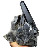 6.9LB Natural Beauty Rare Black Quartz Crystal Cluster Mineral Specimen  Y00809