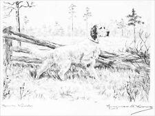 English Setter Dog 1923 Marguerite Kirmse ~ 8 Large New Blank Note Cards