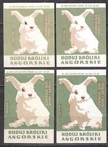 POLAND 1965 Matchbox Label - Cat.Z#576 set, Grow Angry Rabbits.