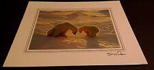 Animal Photo Print - 8x10 - Polar Bear & Cub Sunset - New, Matted -Hq Gift