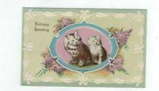 "Antique embossed Cat Kitten post card ""Birthday Greeting"""