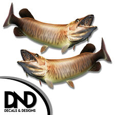 """Tiger Musky - Fish Decal Fishing Tackle Box Bumper Sticker """"5in SET"""" F-0890 D&"""