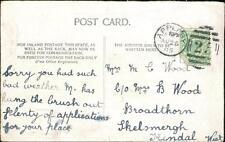 Mrs M C Wood. Broadthorn, Skelsmergh, Kendal 1905   -   L1845