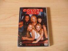 DVD Coyote Ugly - Die heißeste Bar New Yorks! Kultfilm