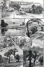 Hampstead Heath 1888 EAST PARK ESTATE PARLIAMENT HILL FIELD Matted Print w Story