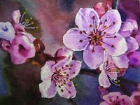 Painting Spring Sakura Cherry Blossom Branch Tree Flowers Nature ACEO .