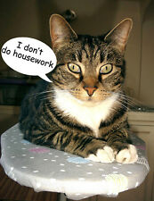 Tabby Cat Fridge Magnet, Don't Do Housework!