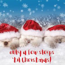 3D Holographic A Few Sleeps Christmas Greeting Card Lenticular Xmas Cards