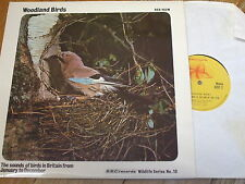 RED 103 M Woodland Birds / Eric Simms