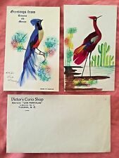 1940s Hand-Painted Mexican Bird Cards & Real Feathers Victor's Curio Shop