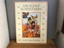 Flower Fairies Book Unbenutzt. Top