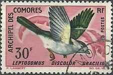 Timbre Oiseaux Comores 44 o lot 13088