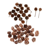 80x Small Natural Dried Pine Cones Fruits Dried Flowers Decor Table Ornament