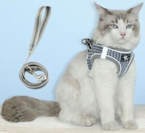 breathable mesh reflective Cat Harness and leash