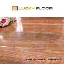 Sample:NewSpotted Gum LAMINATE FLOORING /FLOATING FLOOR /FLOORS /TIMBER LAMINATE