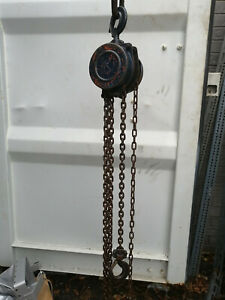 TRACTEL Tralift 1-ton Hand chain Hoist with 20 ft. of lift and control chain