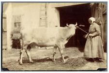 A la ferme, vers 1880 Vintage albumen print.  Tirage albuminé  11x16  Circ