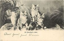 c1907 Hartmann Lithograph Cat Postcard Fuzzy Kittens, In Grandma's Tiny Chair