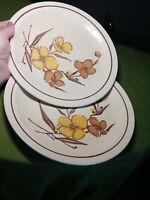 Vintage Homer Laughlin floral Yellow & Brown Egg Shell Dinner Plates 1977 eu