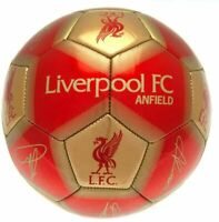 Liverpool FC Football Team Ball Printed Signatures Signed Size 5 New