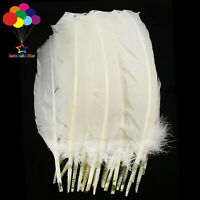 10-100pcs/lot Pure White 10-12inch Turkey Quill Feathers for Fashion Decorations