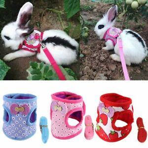 Animal Harness & Leash Set Guinea Pig Ferret Hamster Rabbit Squirrel Vest S/M/L