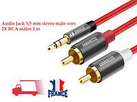 RCA Câble 2RCA à 3.5 Câble Audio RCA 3.5mm Jack RCA AUX Câble 2M