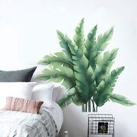 FP- Refreshing Tropical Plant Leaf Home Wall Sticker Living Room Decal DIY Decor