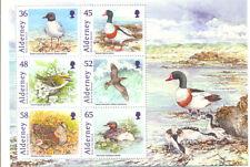 Alderney oiseaux min feuille