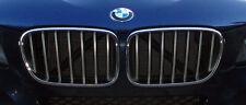 BMW Brand 2011-14 F25 X3 OEM Genuine Titanium Silver Front Grille Pair Brand New