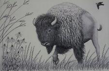 """Scott Patton Art: """"Prairie Denizens"""" Original Framed Bison Pencil Drawing"""
