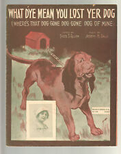 What D'ye Mean You Lost Yer Dog 1913 SOPHIE TUCKER Novelty Sheet Music Q23