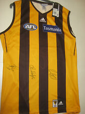 HAWTHORN- 3X NORM SMITH MEDALISTS HODGE, RIOLI & LAKE SIGNED JERSEY UNFRAMED