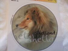 1 autocollant - motif chien  SHETLAND