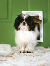 PetSafe Extreme Weather Small Dog or Cat Pet Door PPA00-10984