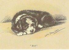 Old English Sheepdog Puppy - Matted Dog Print - Lucy Dawson