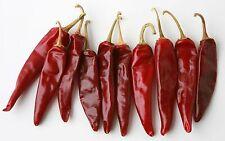 HUNGARIAN HEIRLOOM!!! Kalocsai Sweet Spice Paprika 5+ seeds