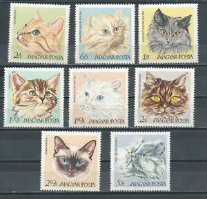 HUNGARY - 1968 Domestic Cats (MNH)