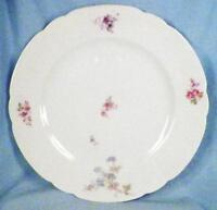 Antique Leonard Vienna Austria Dinner Plate Wildflowers Porcelain