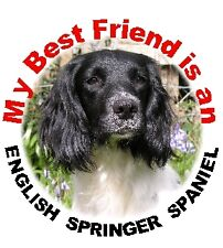 2 English Springer Car Stickers by Starprint