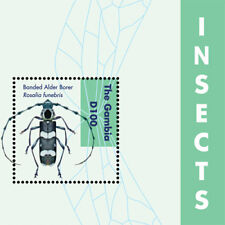 Gambia 2012 - Insects Souvenir Sheet  MNH