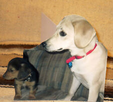 """Custom Family, Pet, Historic. and More Tabletop Display Standees Up to 10"""" Tall"""