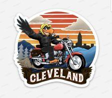 WMMS 100.7 The Buzzard STICKER tribute - Cleveland Ohio Rock N Roll Look
