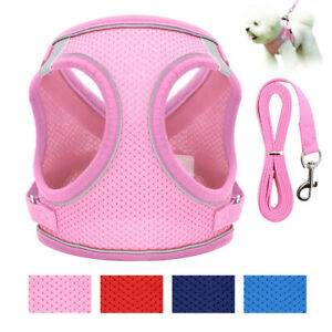Small Pet Vest Harness Leash Set Dog Puppy Cat Walking Soft Mesh Reflective Vest